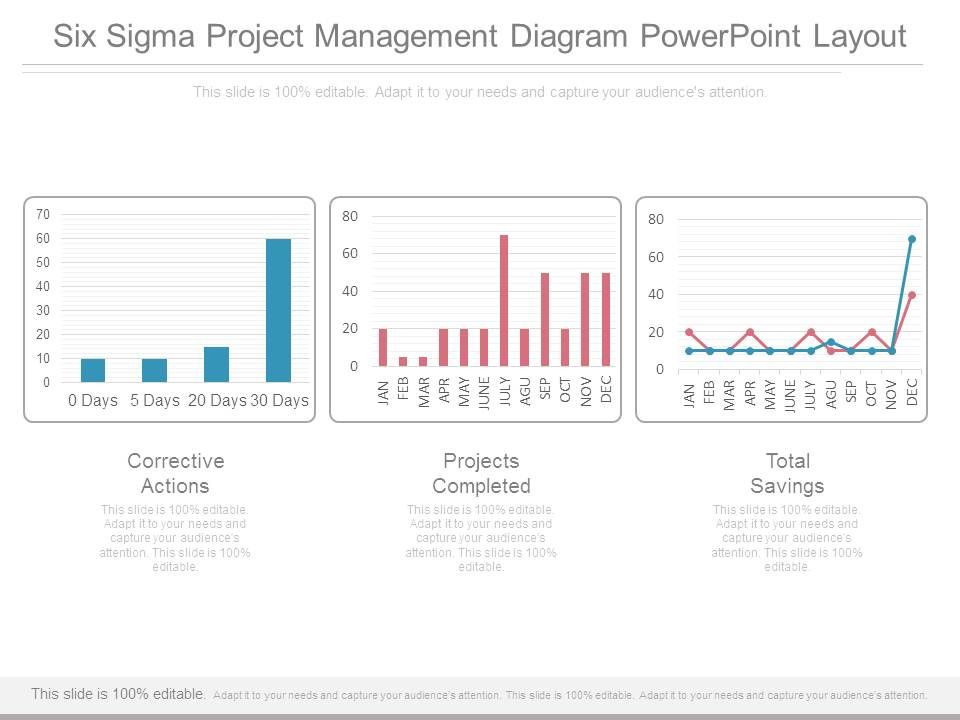 example of six sigma project presentation